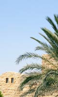 Syrian sunshine, date palms and a light stone wall
