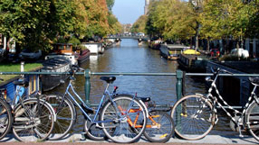 Useful facts about the Dutch language