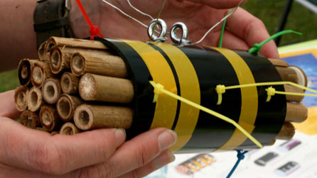 bbc breathing places make a bee home or caf rh bbc co uk bee home property bee home property