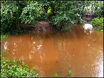 Bbc derby nature mickleover meadows - Build pond wildlife haven ...