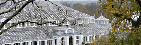 picture of greenhouse at Kew Gardens, London