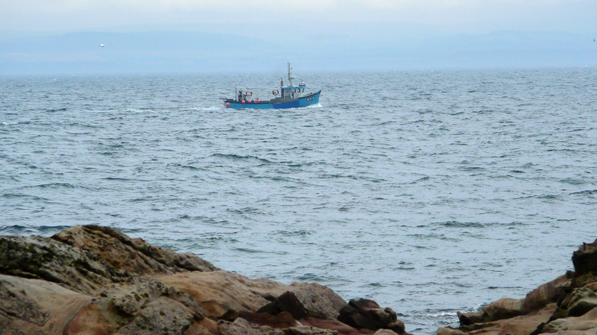 A fishing boat off the coast of Fife's East Neuk