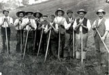 Image of men in field with hoes