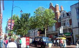 Shoppers and trees on Broad Street, Reading