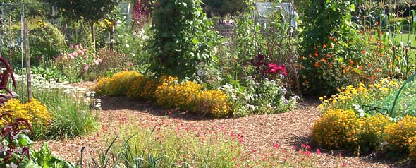 veg beds and growing flowers