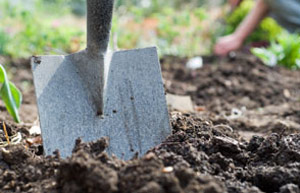 Cultivating the soil by digging is fundamental to good gardening. Learn the difference between single and double digging and when the no dig method works.