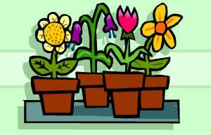 BBC - Gardening - Gardening Guides: Gardening with Children - Flowers