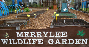 Merrylee Primary School
