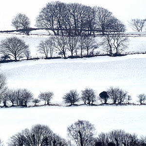 Fields of snow by Dr Murray.