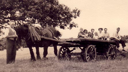 Rural scene of horse and cart with people sitting on it (Image provided by Barbara Carr)