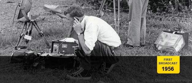 David Attenborough recording sound on a 'Zoo Quest' expedition © David Attenborough.