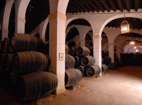 Barrels in a cellar in Spain