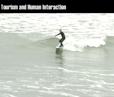 Tourism and Human Interaction clip