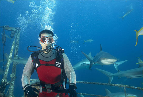 All the lead stars had to be underwater in the presence of sharks during the filming of Blue.