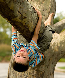 A young boy hanging upside down from a tree branch and smiling.