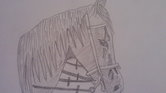 Horse drawing...