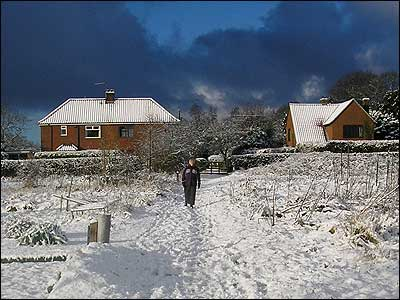 Coltishall allotments covered in snow.