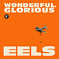 Review of Wonderful, Glorious