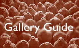 Check out the BBCi Cornwall Gallery Guide