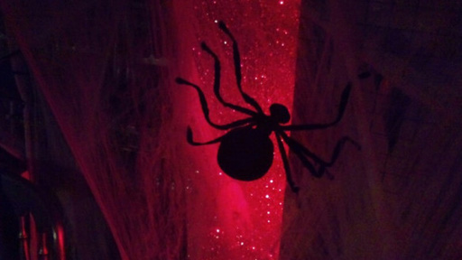 Spider in Strictly ballroom