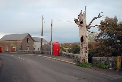 The 'Haunted' tree in the village of Finnis, Co.Down