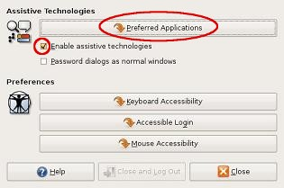 Detail from 'Assistive Technologies Preferences' window