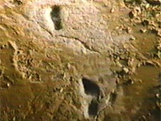 8,500-year-old footprints