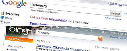 Screengrabs of Google and Bing search for torsorophy