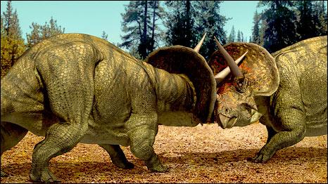 Bbc World Service News Did The Triceratops Dinosaur