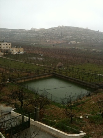 Albowaireh region in the winter, a pond is mediated it to irrigat the surrounded fields of grapes, this pond is filled now with the rain water.