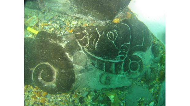A merman carving found on the Swash Channel Wreck. © Bournemouth University