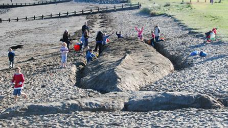 giant sand sculpture in the form of a whale in Fishguard