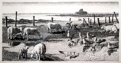 Charles Tunnicliffe's monochrome illustration of Porth Cwyfan