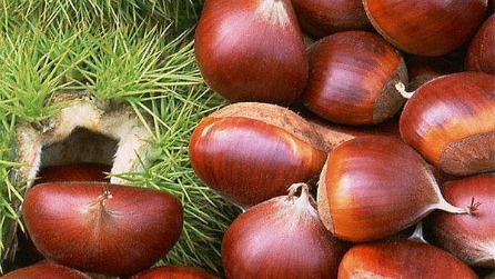 Chestnuts not roasting