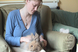 Loveday has a house full of rabbits. Here she introduces us to some of her fury friends.
