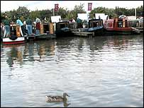 Image of the boats and a duck