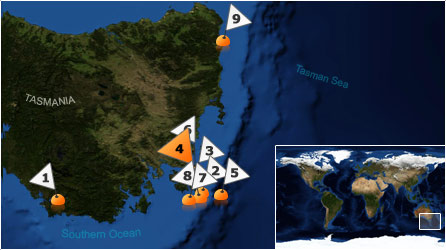 Dive map - Southern Ocean - Site 4