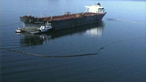 Pollution - the Exxon Valdez oil spill