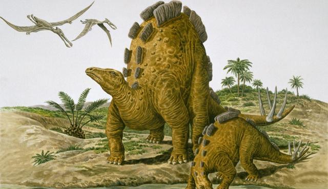 Stegosaur (image: De Agostini UK / Natural History Museum London)