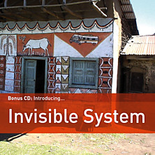 Review of Introducing Invisible System