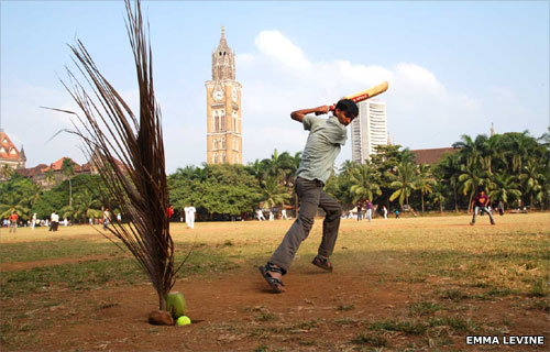 Boys play cricket with palm tree 'stumps'