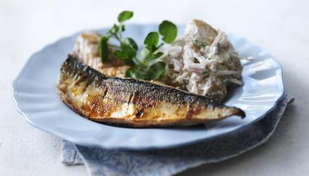 Spiced mackerel with horseradish potatoes