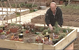 Bbc Gardening Gardening Guides Techniques Build A