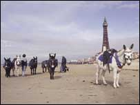 Blackpool Tower and donkeys
