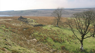 Colour view of Eaglesham Moor. In the foreground stands a small group of bare trees and the low ruins of a croft or other stone building. The edge of a loch or reservoir can be seen in a dip in the hills behind.