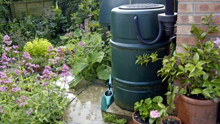 BBC - Breathing Places - Collect rainwater