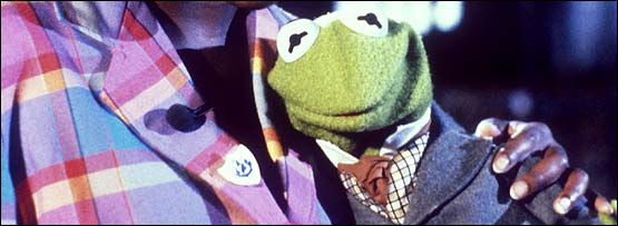 A muppet, Kermit the Frog