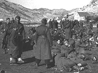 Partisan fighters guard 200 prisoner at Ledenice, 1944