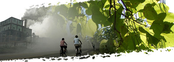 Composite image: polluting factory, a tree branc and two people cycling down a path