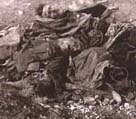 Photo of two British troops killed in action